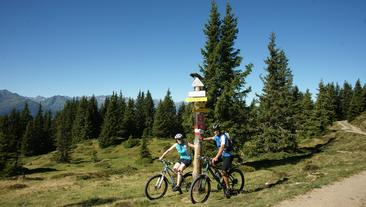 Mountain biking at Hochsonnberg (c) Tourist office Piesendorf Niedernsill, Photo Harry LiebmannInnumerable activities Do, what you've ever wanted to do, in Piesendorf and Niedernsill you have all options.  More Information
