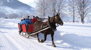 Horse-drawn sleigh (c) Tourist Office Piesendorf Niedernsill, Photo Harry Liebmann