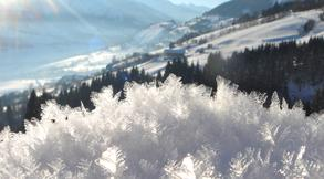 Snow crystals (c) Tourist Office Piesendorf Niedernsill, Photo Harry Liebmann